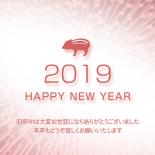 無料 2019年 デザイン年賀状 スペクタクル
